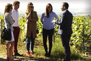 Oenosphères Oenotourisme Région Champagne Ardenne